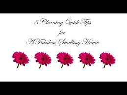 cleaning tips 5 cleaning tips for a great smelling home youtube
