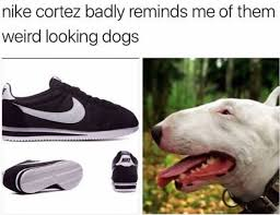 Nike Meme - nike cortez funny pictures daily lol pics