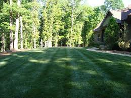 project gallery landscape creations ga