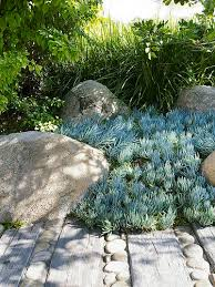 Coastal Landscape Design by Best 25 Coastal Gardens Ideas On Pinterest Australian Garden