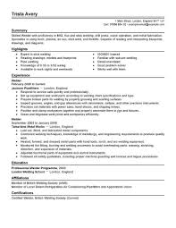 Examples Of Resume Title by Examples Of Resumes Good It Resume Why This Is An Excellent