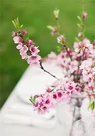 Cherry Blossom Decoration Ideas Table Decoration 79 Ideas