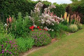 gardening border ideas google search garden ideas pinterest