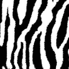 zebra or white tiger stripes fabric eclectic house spoonflower