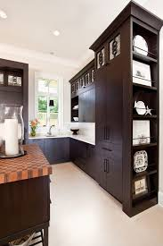 Cabinet Doors Miami Miami Designer Switch Plates Kitchen Transitional With Calcutta