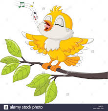cute yellow bird singing isolated on white background stock vector