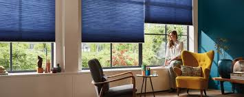 Window Covering Options by Windows Hunter Douglas Group