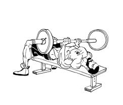 Flat Bench Barbell Press Lazar Angelov U0027s Fitness Academy