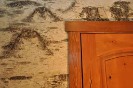 White Oak Bark Powder Laminated Wall Panels Image Gallery Bark House