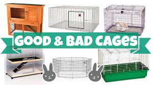 Large Bunny Cage Good Vs Bad Rabbit Cages Youtube