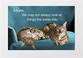Cat Birthday Cards Amazon Com Cat Greeting Cards For Mom Birthday Mother S Day