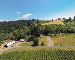 Oregon Ava Map by Farms For Sale Landleader Chehalem Mountains Ava Prime Farm Land