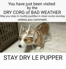 Bad Weather Meme - you have just been visited by the dry corg of bad weather may you