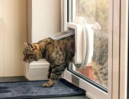 Cat Door For Interior Door Amazon Com Sureflap Microchip Cat Door White Pet Doors Pet