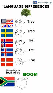Different Languages Meme - ae world languages language differences tree tre hi trae meanwhile