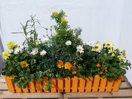 blumenkã sten balkon wohnzimmerz balkonkästen bepflanzen with sommer bepflanzte