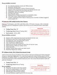 professionally written cv template