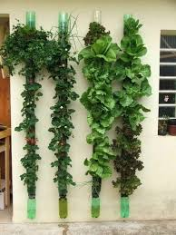 Bottle Garden Ideas 2 Liter Bottle Garden 13 Plastic Bottle Vertical Garden Ideas Soda