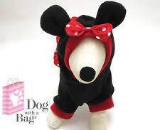 disney minnie mouse dress chihuahua yorkie dog coat medium