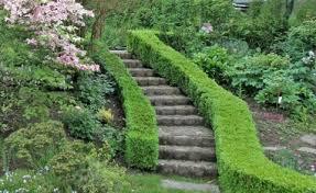 garten treppe gartentreppe gestaltung ideen und tipps mein schöner garten