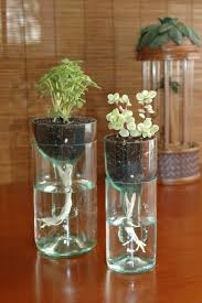 diy self watering planter made from recycled wine bottle http