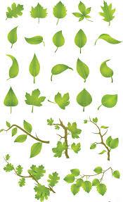 green leaves vector set free