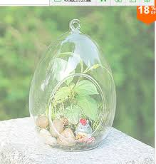 teardrop egg shape table hanging glass vase decorative terrarium