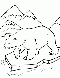 polar animal coloring pages high resolution coloring polar animal