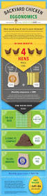 31 best backyard chicken infographics images on pinterest
