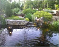 backyards charming backyard ponds outdoor ponds and fountains