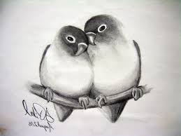 pictures animal pencil sketch drawings art gallery