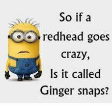 Ginger Snap Meme - 25 best memes about ginger snaps ginger snaps memes