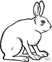 jack rabbit coloring page free printable coloring pages