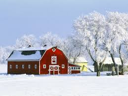 Wallpaper Barn Nature Red Canada Barn Hoarfrost 1600x1200 Wallpaper High Quality