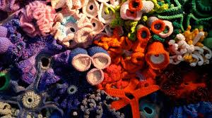 sample of photo essay math ted com gallery what happens when you mix math coral and crochet it s mind blowing