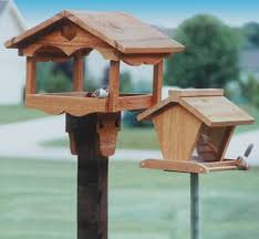 best 25 wooden bird feeders ideas on pinterest bird feeder