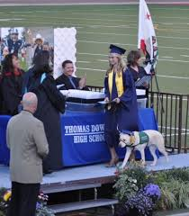 dog graduation cap and gown no bones about it guide dogs for the blind s hats to