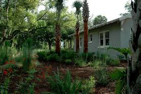 native florida plants florida native plant show dix hite partners inc