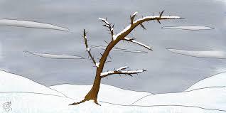 snow tree cyrille berger