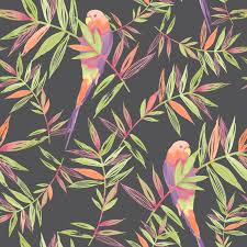 paradise birds wallpaper black rasch 209211 new tropical feature