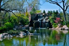 Abq Botanical Gardens Lovely Water Features Picture Of Abq Biopark Botanic Garden
