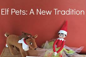 on the shelf pets pets a new tradition lil burghers lil burghers