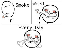 Every Meme Face - image smoke weed everyday jpg teh meme wiki fandom powered by