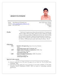 Resume Sample Format India by Resumes India Template