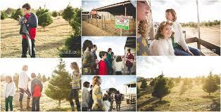 merry bright the perfect tree elgin christmas tree farm
