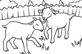 free coloring pages goats coloring pages of goats coloring goat smiling billy the goat
