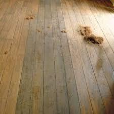 Fix Creaky Hardwood Floors - how to fix creaky wood floors indoor ideas pinterest woods