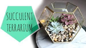 diy geometric succulent terrarium juli youtube