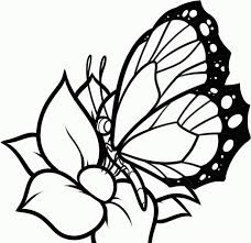 animal girls butterfly sheets coloring pages for kids butterfly