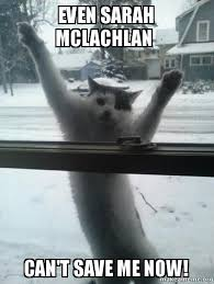 Save Me Meme - even sarah mclachlan can t save me now make a meme